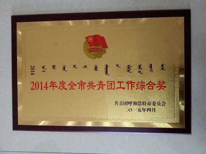 """城发公司团委荣获""""2014年度全市共青团工作综合奖"""""""