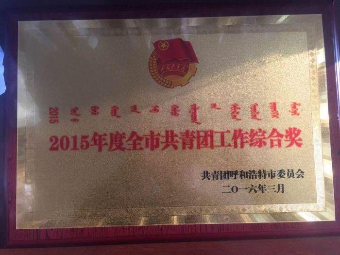 """城发公司团委荣获""""2015年度全市共青团工作综合奖"""""""
